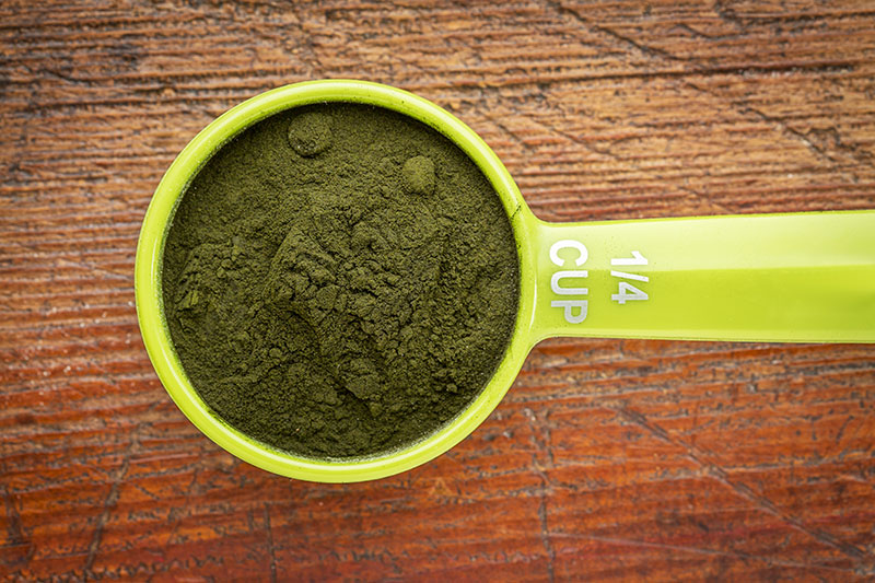 Chlorella scoop